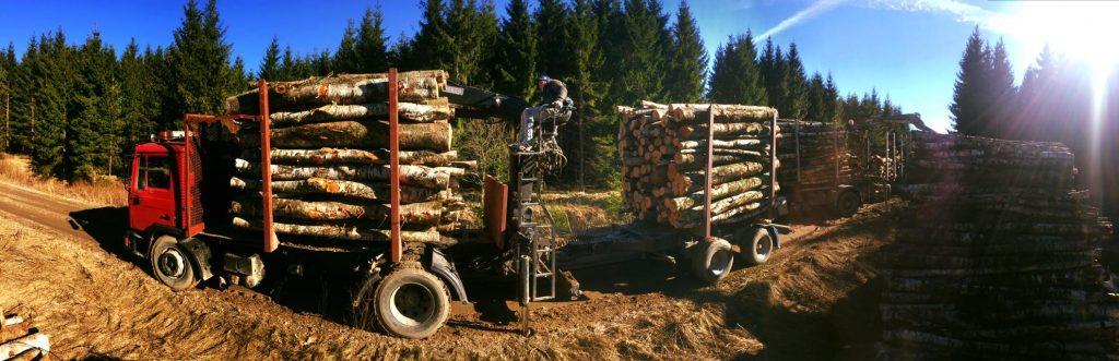 miškovežio paslaugos